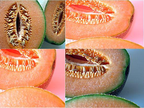 Cantaloupes by Beccah