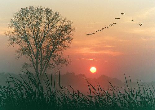 Dawn on America