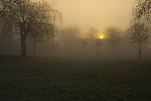 Foggy Sunrise by Lady Gooner