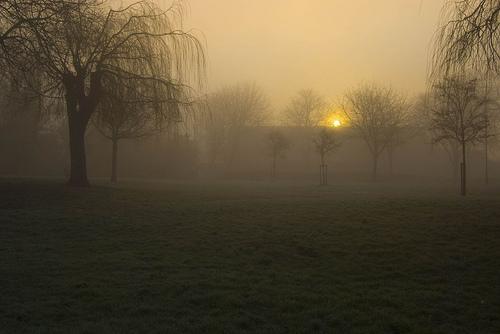 Foggy Sunrise by Lady Gooner